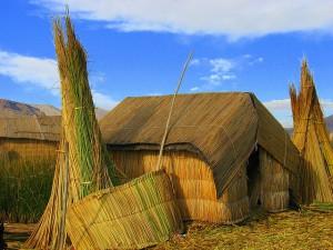 casas de totara