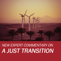 New Expert Commentary by Dunja Krause