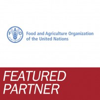 Featured Partner: FAO