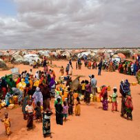 FAO and UNICEF Host International Conference on Social Protection, Fragility and Forced Displacement